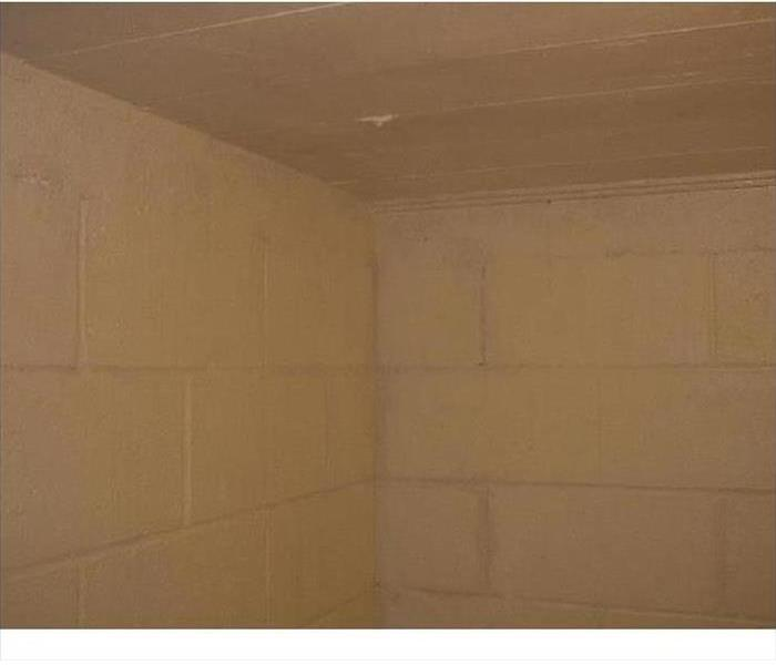Montgomery Mold, Moisture and Remediation After