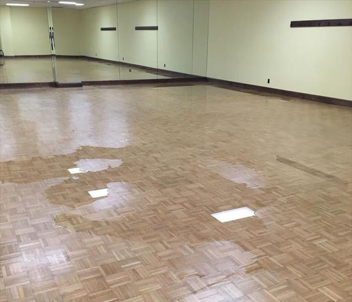 Ballet Studio Suffers a Flood in Montgomery Before