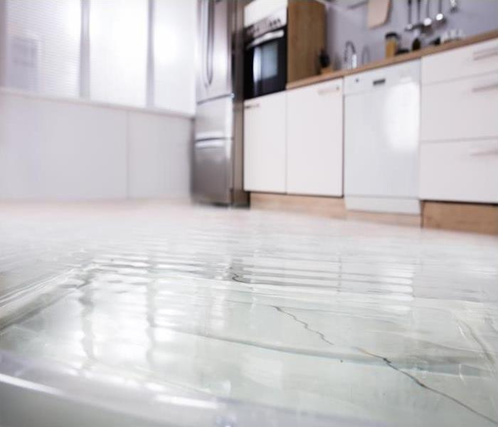 Water Damage Don't Let Your Dishwasher Cause Water Damage Issues In Your Highland Park Home