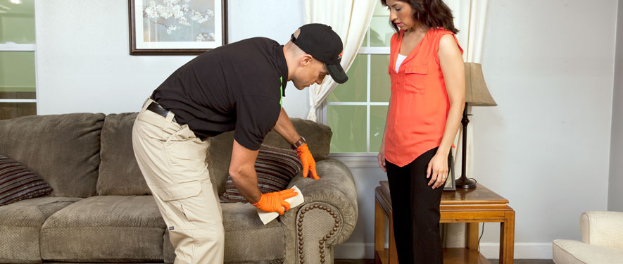 Montgomery, AL carpet upholstery cleaning